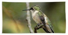 Female Ruby-throated Hummingbird On Branch Bath Towel