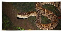 Bath Towel featuring the photograph Fer-de-lance, Botherops Asper by Breck Bartholomew