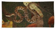 Bath Towel featuring the photograph Fer-de-lance, Bothrops Asper by Breck Bartholomew