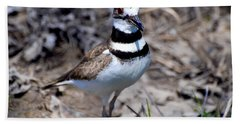 Field Killdeer Hand Towel