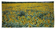 Field Of Flowers  Hand Towel