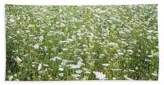 Field Of Queen Annes Lace Bath Towel