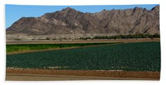 Fields Of Yuma Bath Towel by Greg Patzer