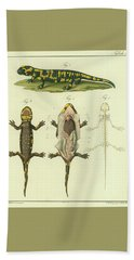 Bath Towel featuring the drawing Fire Salamander Anatomy by Christian Leopold Mueller
