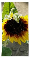 Bath Towel featuring the photograph First Bloom Maturing  by Angela J Wright