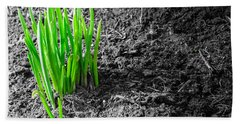First Green Shoots Of Spring And Dirt Hand Towel