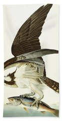 Fish Hawk Hand Towel by John James Audubon