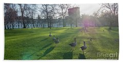Five Ducks Walking In Line At Sunset With London Museum In The B Bath Towel