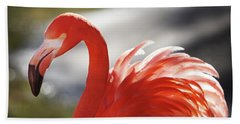 Hand Towel featuring the photograph Flamingo 2 by Marie Leslie