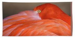 Flamingo Hand Towel by Michael Hubley