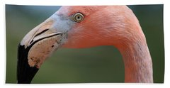 Flamingo Protrait Hand Towel by Marty Fancy
