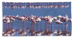 Flamingo Reflection - Lake Nakuru Hand Towel