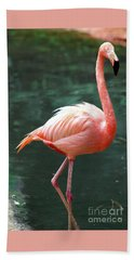 Hand Towel featuring the photograph Flamingo Single Flamingle by D Renee Wilson