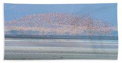 Flamingos And Golden Jackal In Tanzania Hand Towel