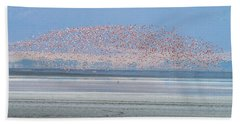 Flamingos And Golden Jackal In Tanzania Bath Towel