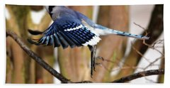 Flight Of The Blue Jay Hand Towel