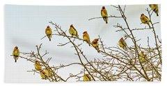 Flock Of Cedar Waxwings  Hand Towel by Geraldine Scull