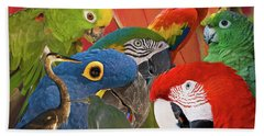 Florida Birds Bath Towel