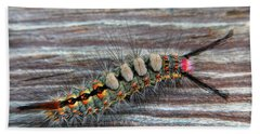 Florida Caterpillar Hand Towel by Hanny Heim