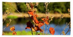 Florida Fall Leaves Hand Towel