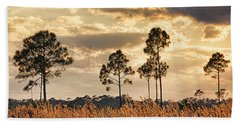Florida Pine Landscape By H H Photography Of Florida Hand Towel