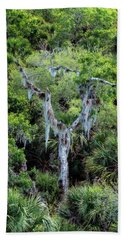 Florida Spanish Moss Hand Towel