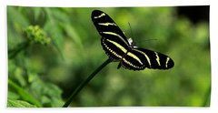 Florida State Butterfly Bath Towel by Greg Allore