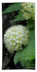 Hand Towel featuring the photograph Flower Ball by Rod Wiens