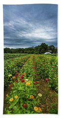 Flower Field At North Sea Farms Hand Towel