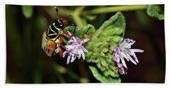 Flower Scarab - Trigonopeltastes Delta Hand Towel