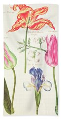 Flower Studies  Tulips And Blue Iris  Bath Towel