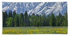 Dm9228-flowers And The Tetons  Hand Towel