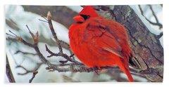 Fluffed Up Male Cardinal Hand Towel