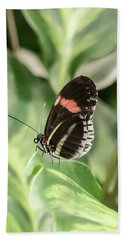 Flutterby Hand Towel by Cathy Donohoue