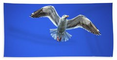 Flying Gull Hand Towel by Robert Bales