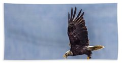 Bath Towel featuring the photograph Flying With His Mouth Full.  by Timothy Latta