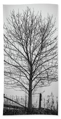 Foggy Lone Tree Hill Fine Art Bath Towel