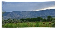 Foothills Of Fort Collins Hand Towel