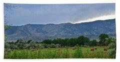 Foothills Of Fort Collins Bath Towel