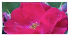 For The Love Of Rose 8 Bath Towel