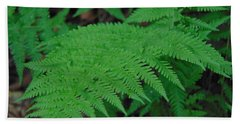 Forest Fern Hand Towel