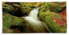 Forest Stream Hand Towel by Jorge Maia