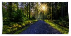 Forest Sunlight Hand Towel by Ian Mitchell