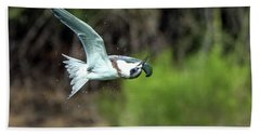 Forster's Tern 5744-092217-1cr Hand Towel
