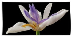 Fortnight Lily On Black Hand Towel