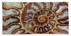 Fossilized Ammonite Spiral Hand Towel