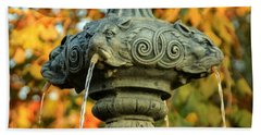 Hand Towel featuring the photograph Fountain At Union Park by Chris Berry