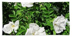 Hand Towel featuring the photograph Four White Roses by Stephanie Moore