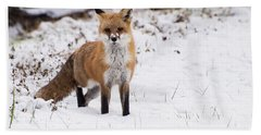 Fox 4 Hand Towel