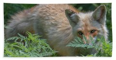 Fox In The Ferns Bath Towel